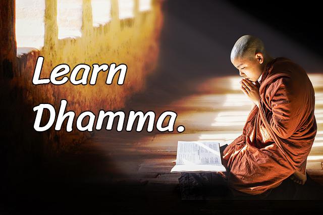 Study Dhamma, Study Buddhiat Proverbs.